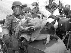 Bastogne, Belgium, Battle of the Bulge - Dec 1944
