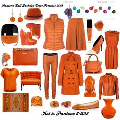 """Pantone Fall Fashion Color Forecast 2013 - Koi"" by bekzilla on Polyvore"