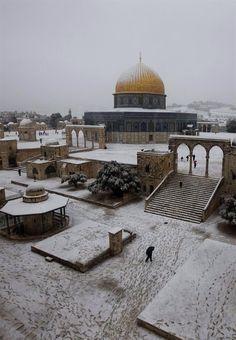 Jerusalem December 13, 2013 J'ai aussi eu droit à de la neige à Jérusalem en février 1988 !