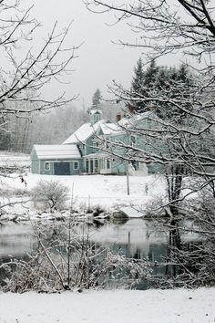 Winter Beauty by (Nikki Graham)