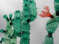 colourful cacti made from recycled plastic bottles