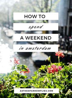 Amsterdam | City Break Guide | European Travel | The Netherlands Breaks #amsterdam #traveltips