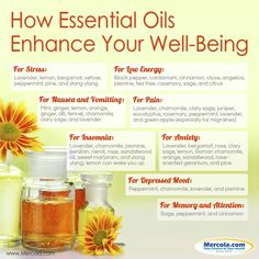 Essential Oils for Health and Survival