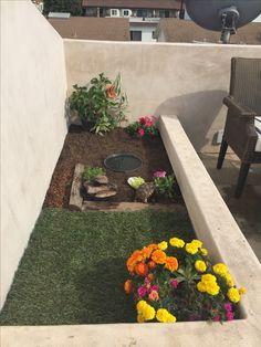 All You Need To Know About Dessert Tortoise Care Horsefield Tortoise, Tortoise House, Tortoise Habitat, Tortoise Table, Turtle Habitat, Sulcata Tortoise, Turtle Pond, Pet Turtle, Tortoise Enclosure Indoor