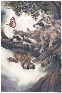 Mischief, Curiosity & Trouble by Jody Bergsma ~ racoons Animal Sketches, Animal Drawings, Cute Drawings, Tattoo Indio, Painting & Drawing, Watercolor Paintings, Image Deco, Dragonfly Art, Animal Magic