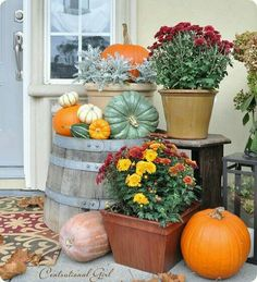 I love fall,  mums,  pumpkins, etc