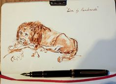 I just received a Japanese Namiki Falcon 14C semi flex fountain pen. It is without doubt the most popular pen in the world for drawing. It is so fantastic to draw with I cannot put it down! Here's a quick copy of Rembrandt's famous lion drawing just to start to 'wear in' the new pen.