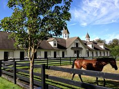 totally in love right now =) Dream Stables, Dream Barn, Horse Stables, Horse Farms, My Dream Home, Luxury Horse Barns, Horse Barn Designs, Barn Apartment, Cute N Country