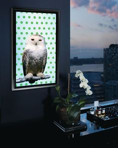 A stoic owl gazes impassively from a screen. Instead of a forest backdrop, the creature is juxtaposed against mod dots. A soundtrack by Carl Maria von Weber loops mysteriously in the background. Suddenly, the bird blinks! Then his head swivels! Exactly who is watching whom?   @Neiman Marcus