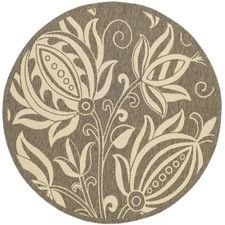 Courtyard Brown & Natural Outdoor Area Rug