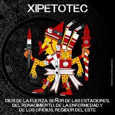 La mitología mexica o mitología azteca es una extensión del complejo cultural mexica. Antes de llegar los aztecas al valle del Anáhuac, ya existían antiguos cultos y diosas del Sol que ellos adoptaron en su afán de adquirir un rostro.[cita requerida] Al asimilarlos también cambiaron sus propios dioses, tratando de colocarlos al mismo nivel de los antiguos dioses del panteón nahua. Aztec Tattoos Sleeve, Aztec Religion, Aztec Symbols, Mexican Artwork, Ancient Aztecs, Aztec Culture, Aztec Warrior, Mexico Art, Aztec Art