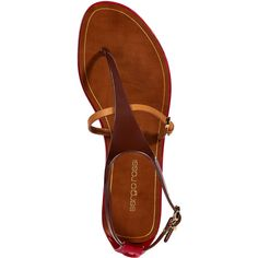 SERGIO ROSSI Maroon And Red Safari Lux Flats (€170) ❤ liked on Polyvore featuring shoes, flats, sandals, leather shoes, multi colored flats, multi color flats, red flats and colorful flats