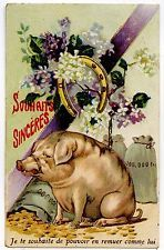 COCHON PIG PORC PORK PORCELET SCHWEIN