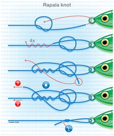 Predator fishing knots : Rapala knot