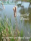 Pond Water Study
