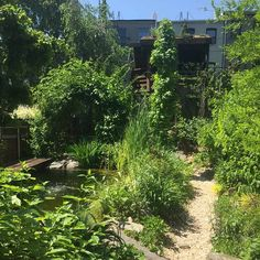 Building a Green Brownstone with Eco Brooklyn — Ms. Weatherbee