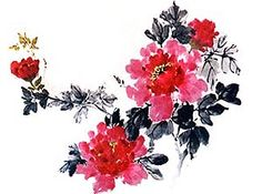 chinese peony flower painting