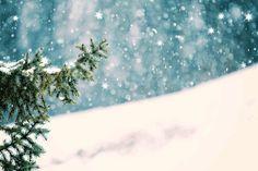 Sparkly Holiday Photos - Sparkling Marketing #christmas #marketing #tree #holidays #xmas #santa #snow #glitter #sparkling