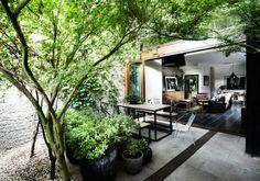 an interior that is more beautiful because of the exterior - lush, green, private