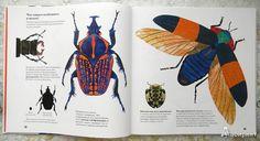 Иллюстрации Книги Стива Дженкинса можно узнать с первого взгляда. Он работает в оригинальной коллажной технике, собирая иллюстрации из арт-бумаги. Благодаря использованию бумаги разных фактур и цветов ему удается создать удивительно натуралистичные изображения.