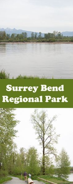 Surrey, BC's newest park is a beautiful place for a walk, bike ride, or birding! Vancouver Hiking, Canadian Travel, Summer Dream, What A Wonderful World, Family Activities, Surrey, Wonders Of The World, The Good Place, Beautiful Places