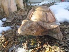 Shellie-The Box Turtle Statue от ConcreteDesignStudio на Etsy