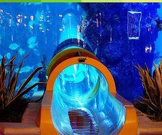 Insolite Faire du toboggan à travers un aquarium géant, ça vous tente? C'est possible dans cet hôtel de Las Vegas...  On est fans du concept !