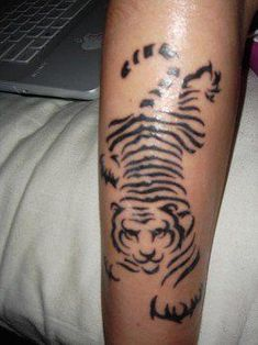 5c9d1d513409b Do you want to find out great tribal tiger tattoos for you? Check out the  best tribal tiger tattoo designs with us. For many years we have seen so  many ...