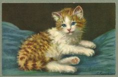Vintage Stehli Freres Postcard of Reclining Cat or Kitten  - Signed A. Lampe