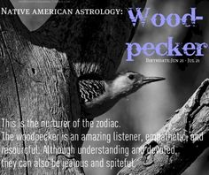 Native American Astrology: Woodpecker, Birthdate: June 21 - July 21