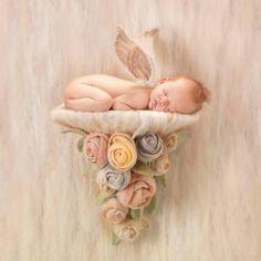 Anne Geddes Baby Photo