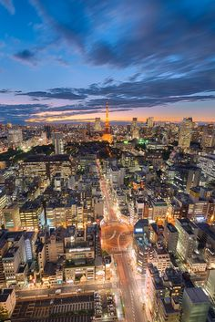 Tokyo, Japanvia / Tokyo After The Storm by Agustin Rafael Reyes Beautiful Sites, Beautiful Places, Tokyo Skyline, Tokyo Japan Travel, Tokyo Tower, World Trade Center, Aerial View, Budget Travel, Vacation Spots