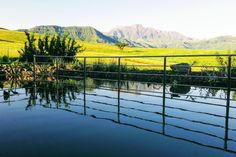 in Cathkin Park, ZA. Dragon's Mist is a luxurious three-bedroom house with stunning panoramic views of the Drakensberg, located on an exclusive 1000 hectare eco-estate teaming with wildlife.