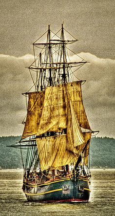 HMS Bounty - David Patterson~The Mutiny on the Bounty was a mutiny aboard the British Royal Navy ship HMS Bounty on 28 April 1789. The mutiny was led by Fletcher Christian against commanding officer Lieutenant William Bligh. According to most accounts, the sailors were attracted to the idyllic life on the Pacific island of Tahiti and were further motivated by harsh treatment from their captain.