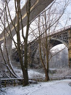 Winter, Ouseburn Valley, Newcastle upon Tyne