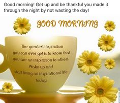 Good morning! Get up and embrace the day by not wasting it- you are one of the fortunate to have woke up?