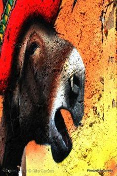 Outros/Grafites - Setúbal