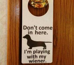 Dachshund Wiener Dog Do Not Enter Sign and Dry Erase Board. Weiner Dog Door Hanger, via Etsy. Funny Dogs, Funny Animals, Cute Animals, Dog Love, Puppy Love, Do Not Enter Sign, Weenie Dogs, Dachshund Love, The Funny