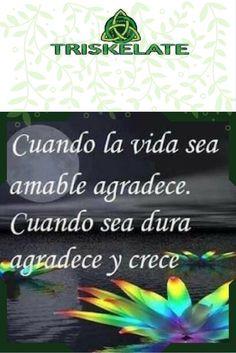 #vida #gracias
