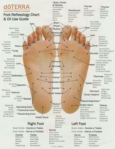 Foot reflexology and essential oil application