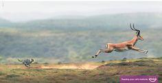 dans-ta-pub-prints-affiches-publicitaire-publicités-les-plus-créatives-2013-cannes-lions-1