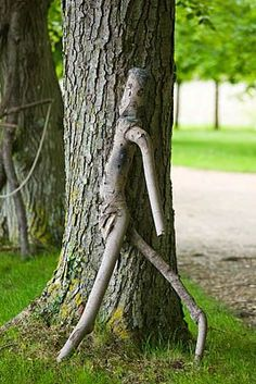 whimsical tree, Clive Nichols photo