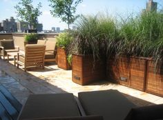 terraces:  tall grasses in modular planters in NYC by Just Terraces