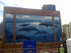 Grey Whale mural by Wyland in Downtown San Diego. Construction is underway on a new building and soon it will no longer be visible.
