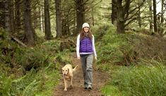 How Walking In Nature Changes The Brain