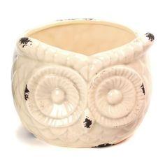 Cream Ceramic Owl Planter | Kirklands