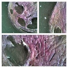 "Moon painting-texture details ""3-D painting"" technique. #Art #painting #paint #artist #artistlife #acrylic #texture"