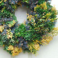 Avant Gardens, Kathy Tracey  Dwarf Blue Spruce (Picea glauca 'Montgomery'), Littleleaf Boxwood (Buxus sinica 'Justin Brouwer'), plus several cultivars of Hinoki Cypress (Chamaecyparis obtusa cvs. 'Confucious', 'Crippsi', and 'Jade')