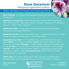 Rose Geranium is a great oil to use for easing anxiety and depression. Essential Oil Brands, Essential Oil Spray, Best Essential Oils, Essential Oil Diffuser, Essential Oils For Depression, Essential Oils For Anxiety, Rose Geranium Oil, Adrenal Support, Hot Flashes