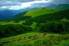 Caucasus mountains, Abkhazia